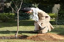 کاشت نهال توسط رهبر معظم انقلاب به مناسبت روز درختکاری