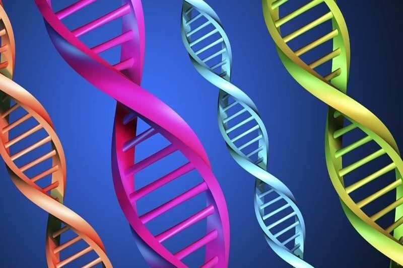 هر گونه تغییرات ژنتیکی در ورزشکاران ممنوع میشود