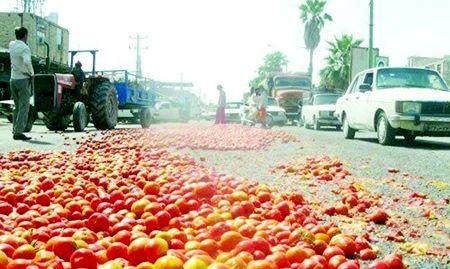 عدم وجود تشکل های صنفی قوی مهمترین مشکل بخش کشاورزی هرمزگان است