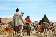 عشایر اردبیل از کوچ زودهنگام خودداری کنند
