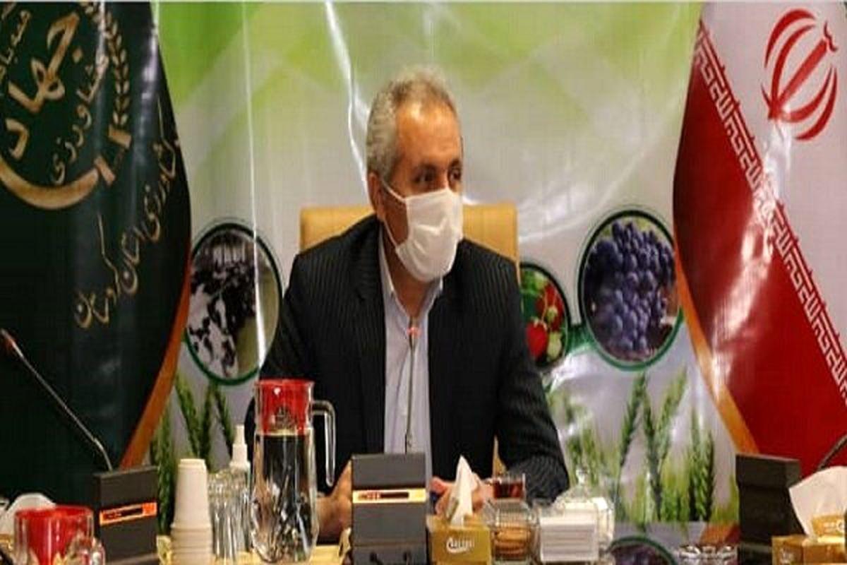 اجرای طرح جهش تولید در کردستان به منظور ارتقای امنیت غذایی در کشور