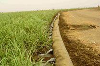 اختصاص ۵۰۰ میلیون دلار از صندوق توسعه ملی برای طرحهای آبیاری تحت فشار