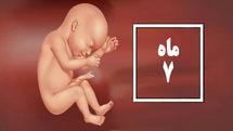 راهنمای کامل ماه هفتم بارداری/ دغدغه ها و مراقبت های ماه هفتم بارداری چیست؟