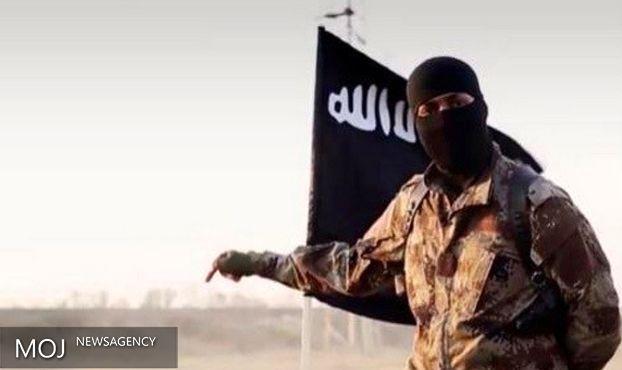 سرکرده داعش در شمال بغداد به هلاکت رسید