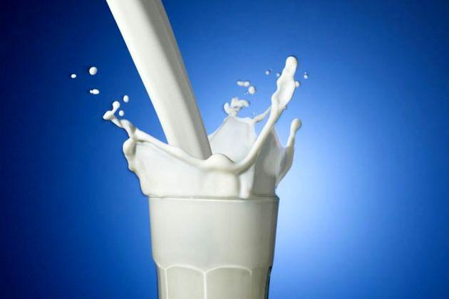 جشن روز جهانی شیر در دو شهر مازندران برگزار می شود