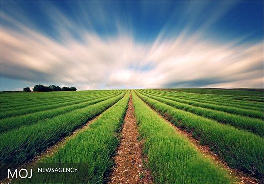 توصیههای شش روزه هواشناسی به کشاورزان سراسر کشور