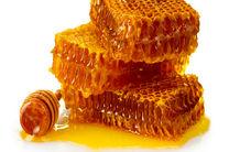 برداشت 218 تن عسل در استان قم