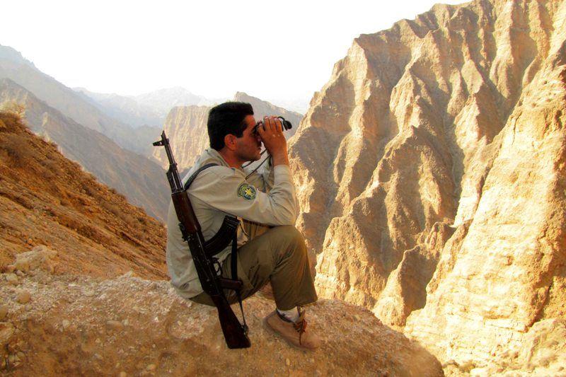 کشته شدن یک محیط بان در درگیری با شکارچیان غیرمجاز