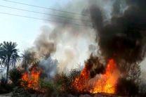 باغ های ایستگاه تحقیقات کشاورزی و منابع طبیعی میناب در آتش سوخت