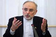 امروز ایران در مدار سیاسی خود قرار دارد/ اگر مقاومت کنیم یقیناً از این گردنه عبور خواهیم کرد