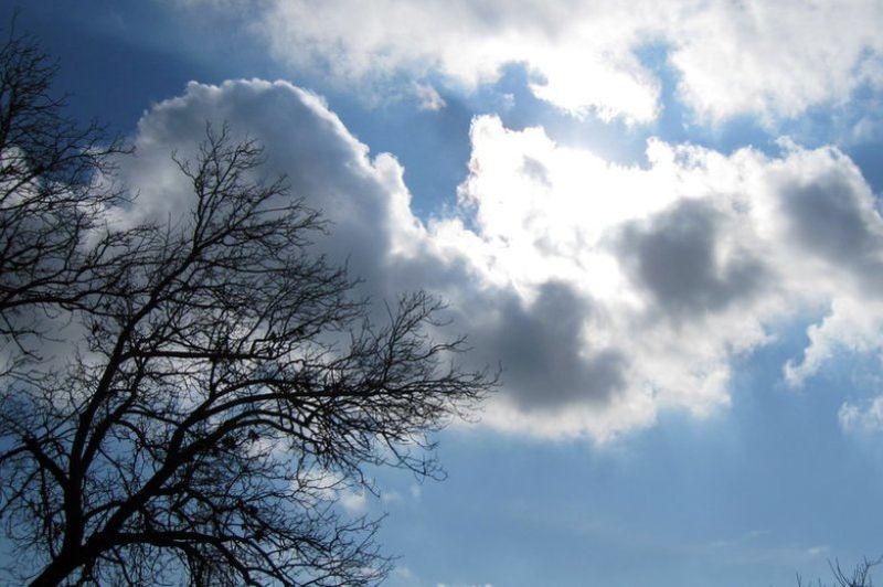 فردا احتمال بارش پراکنده باران در بندرعباس وجود دارد