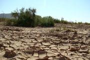 عملیات بیابان زدایی ۲۰هزار هکتار اراضی بیابانی تهران