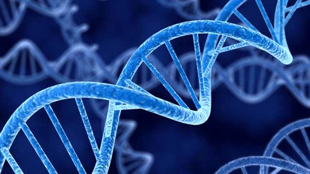 نقش ژنتیک در تشخیص بیماری/ارائه روش های متفاوت درمانی