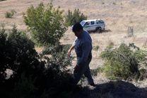 شناسایی و انهدام 15 کومه شکارچیان غیرمجاز کبک در منطقه حفاظت شده