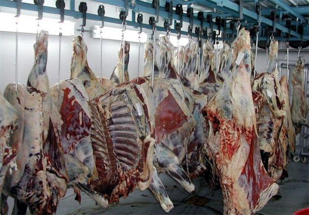 توزیع روزانه 30 تن گوشت گرم گوسفندی در تهران