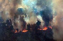برزیل کمک گروه جی 7 در مورد آتش سوزی جنگل های آمازون را رد کرد