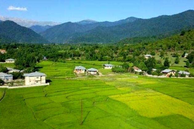 رفع تصرف اراضی ملی در شهرستان ماسال