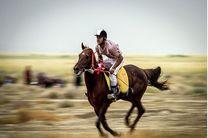 جشنواره منطقهای اسب بومی و کرد در اردبیل برگزار میشود