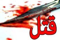 قتل زوج فرهنگی در تختخواب