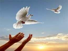 آزادی ۳۰۰ زندانی به همت واقفان همزمان با میلاد پیامبراعظم (ص)