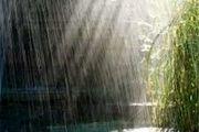 بارش باران در مناطق غربی استان اصفهان / بویین میاندشت پربارش ترین شهرستان