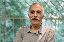 آخرین آمار میهمانان خارجی جشنواره جهانی فجر اعلام شد