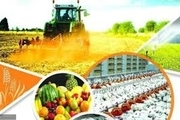 ظرفیتهای کشاورزی استان در تحقق شعار جهش تولید موثر خواهد بود