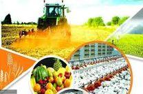 همدان در بین 5 استان برتر کشور در زمینه جذب تسهیلات بانکی مکانیزاسیون کشاورزی