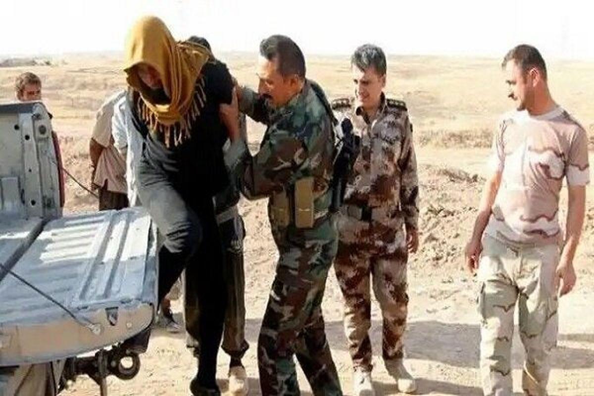 بازداشت تعدادی تروریست به دست نیروهای عراقی در استان الانبار