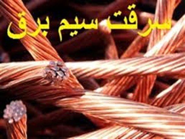 سرقت کابل برق  علت آتشسوزی پارک بزچفت بابل بوده است