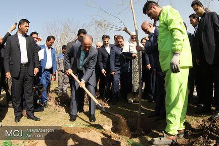 مراسم کاشت درخت صلح و دوستی