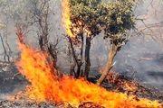 حریق 30 هکتار از زمین های محیط زیست در نطنز