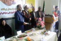 چهارمین جشنواره طبخ آبزیان کرمانشاه برگزار شد