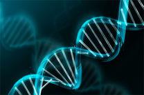 وراثت؛ عاملی غیرقابل کنترل در بروز سرطان