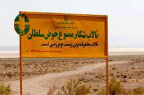 پاسگاه محیط بانی حوض سلطان در استان قم احداثمی شود