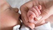 استان مرکزی نیازمند تدوین برنامه جامع بهبود وضعیت فرزندآوری
