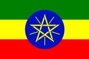 رئیس اسبق دستگاه اطلاعاتی اتیوپی به طور غیابی محاکمه شد