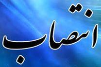 عباس صانعی سرپرست حراست وزارت ورزش شد