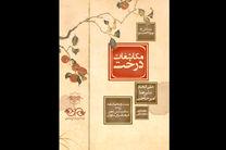 «مکاشفات درخت» در فرهنگسرای نیاوران