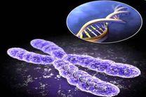 برپایی کنگره بینالمللی سلولهای بنیادی و پزشکی بازساختی در کشور