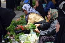 کسب رتبه اول در تشکیل صندوق خرد زنان روستایی توسط همدان