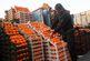 میوه های قاچاق شب عید معدوم شدند/ توقف صادرات گوشت قرمز از استان تهران