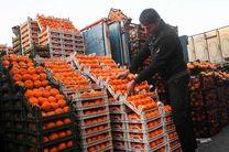 واردات پرتقال مصری و ترکیه اى را تایید می کنم/واردات نارنگی پاکستانی برای سیستان و بلو چستان آزاد شد