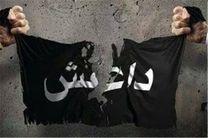 حمله داعش به مرقد فرزند امام هادی(ع) در عراق ناکام ماند