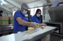 تولید روانه 7 تن محصول پنیر پیتزا در اردبیل