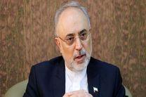 صالحی درگذشت محمدرضا حکیمی را تسلیت گفت