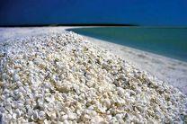بندرلنگه، عروس بندرهای خلیج فارس/جاذبههای گردشگری بندرلنگه را بهتر بشناسید