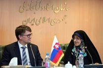 وزیر فرهنگ اسلواکی با رئیس کتابخانه ملی دیدار کرد