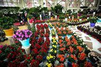 برگزاری نمایشگاه گل و گیاه فرصتی برای برندسازی محصولات استان است