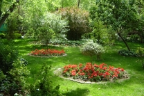 اضافه شدن بیش از 14 هزار درخت به فضای سبز در شهر اصفهان